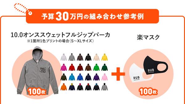 予算30万円の組み合わせ参考例